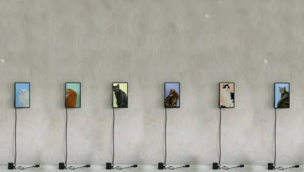 Pastellpop_Ausstellung_jan_brand